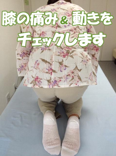 膝の痛み、可動域を確認します